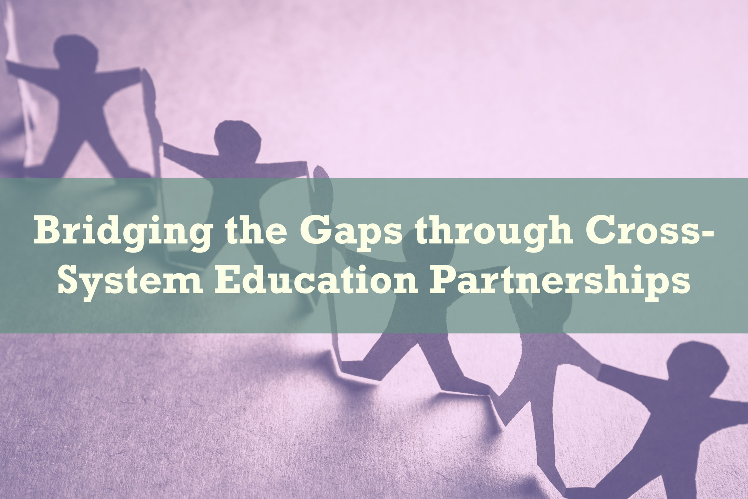 Bridging the Gaps through Cross-System Education Partnerships